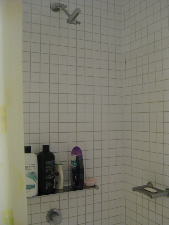 Everyone has different showering habits. Everyone uses different shampoos and soaps. Photo: Mabel Kwong