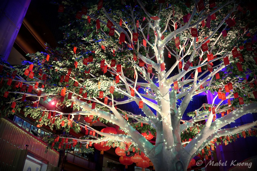 Lunar New Year, Wishing Tree, Crown Casino (3)