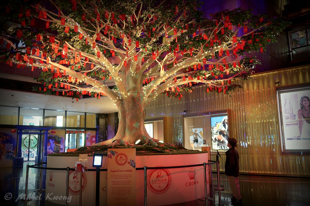 Lunar New Year, Wishing Tree, Crown Casino (5-1)